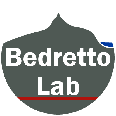 Inauguration of Bedretto Lab